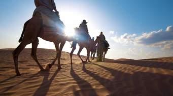 ثبت شرکت در آفریقا : ثبت شرکت درتونس